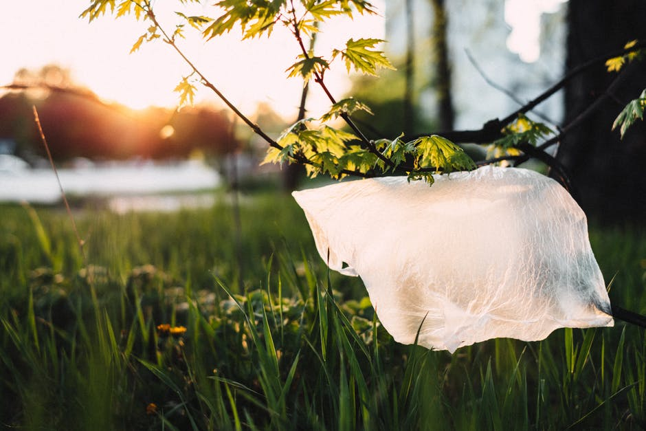 The End Of Single-Use Plastic Bags Is Just The Beginning Of Better Plastic Waste Management